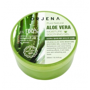 Moisture Soothing Gel Aloe